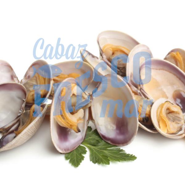 CABAZ FRESCO MAR - MARISCO - www.cabazfrescomar.pt