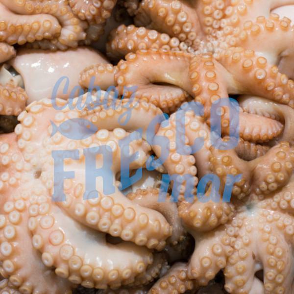 CABAZ FRESCO MAR - POLVO - www.cabazfrescomar.pt